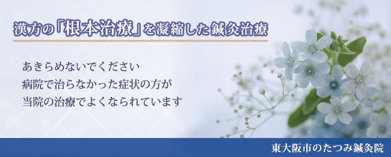 東大阪市のたつみ鍼灸院 漢方の「根本治療」を凝縮した鍼灸医療